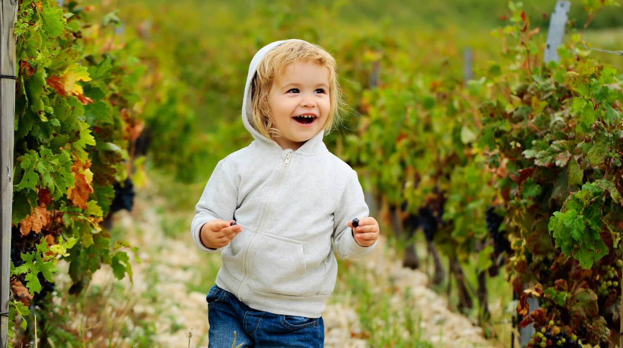 baby boy on vineyards background